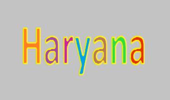 Haryana 10th Model Paper 2021